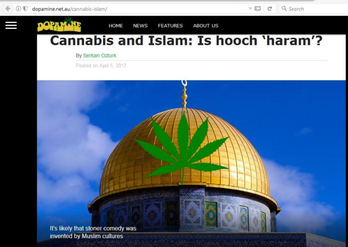 Dopamine Feature on Cannabis and Islam
